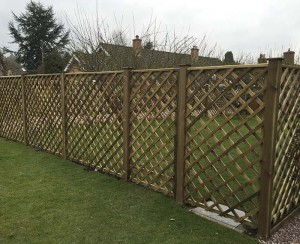 Trellis-fencing-1